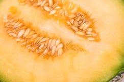 Half a cantaloupe melon Royalty Free Stock Photo