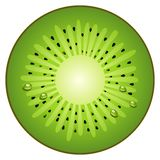 Half circle fruit kiwi Stock Photos