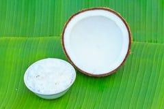 Half of coconut Stock Image