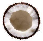 Half of the coconut isolated on a white. Stock Photography
