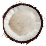 Half coconut top view isolated on white Royalty Free Stock Images