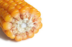 A half of corn cob isolated Royalty Free Stock Image