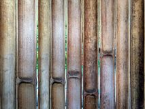 Half-Cut Bamboo Fence royalty free stock images