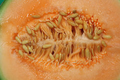 Half cut Cantaloupe Melon Stock Photos