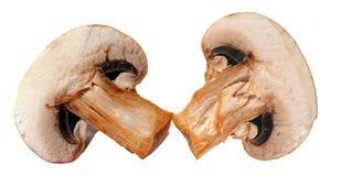 Half cut of champignon mushroom Royalty Free Stock Photography