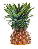 A half cut pineapple against a white background Stock Photo