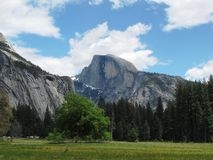 Half Dome. In Yosemite National Park Stock Images