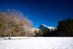 Half Dome And Frozen Meadows Royalty Free Stock Photos