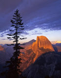 Half Dome from Glacier Point 2. Half Dome photographed from Glacier Point in Yosemite National Park, California Stock Images
