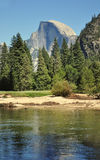 Half-Dome Peak and River in Yosemite. Half-Dome Peak Dominates the park and river in Yosemite Royalty Free Stock Image