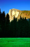 Half Dome, Yosemite National Park Royalty Free Stock Images
