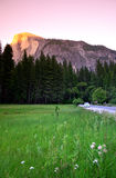 Half Dome, Yosemite National Park Royalty Free Stock Photos