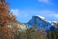 Half Dome in Yosemite Valley. A landscape shot of Half Dome from Yosemite Valley in California royalty free stock images