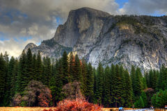 Half Dome Yosemite Valley. National Park California in autumn Stock Photos