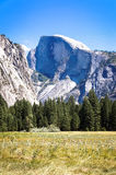 Half Dome from Yosemite Valley in the Summer. Yosemite Valley provides incredible views of Half Dome and the surrounding Meadows Stock Images
