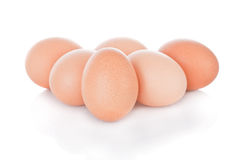 Half dozen  brown chicken eggs isolated Stock Image