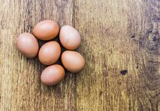 Half a dozen brown eggs Stock Image