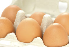 Half a dozen eggs Royalty Free Stock Images