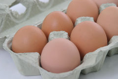 Half a dozen eggs. Half a dozen fresh eggs in a carton Royalty Free Stock Images