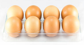 Half a dozen of eggs in the egg tray Royalty Free Stock Photography