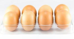 Half a dozen of eggs in the egg tray Stock Photo