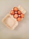 Half Dozen Eggs Royalty Free Stock Photo