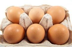 Half dozen fresh eggs Royalty Free Stock Photos