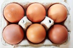 half dussina ägg för ask Arkivfoto