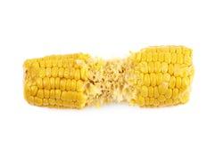Half eaten corncob isolated Stock Photography