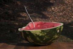 A half eaten half of a watermelon stock image