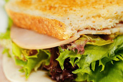 Half-eaten sandwich close up. A close up of a half-eaten sandwich Royalty Free Stock Images