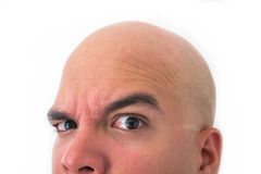 Half face of bald man in white background. Closeup of the eyes. Keen face Royalty Free Stock Photography