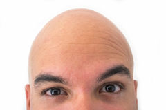 Half face of bald man in white background. Closeup of the eyes. Suspicious face Royalty Free Stock Images