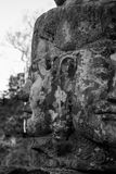 Half faced. Side and front of a rock carved faces in the ruins of Ankor Wat stock image