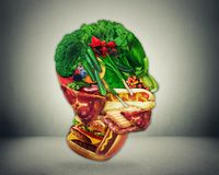 Half fast food and vegetables shaped face as a symbol of diet change from junk to a healthy raw vegetarian produce. Half fast food and vegetables shaped as man royalty free illustration
