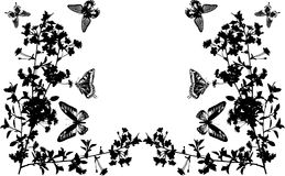 Half frame with butterflies and flowers Royalty Free Stock Photos