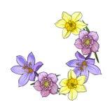 Half frame of spring flowers, decoration element, sketch vector illustration Stock Images