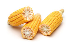 Half of fresh corns Stock Images