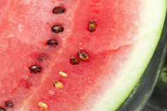 Half a fresh red watermelon close up Stock Images