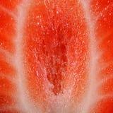 Half fresh strawberry Royalty Free Stock Photo