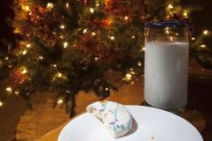 Half gegeten koekje Royalty-vrije Stock Foto