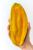 Half Golek Mango in Hand. A Golek mango, cut in half, held in the hand of a young woman, isolated on white. The Golek mango is native to Indonesia Stock Images