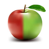 Half Green Half Red High Res Vector Apple Royalty Free Stock Photography