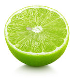 Half of green lime citrus fruit isolated on white Royalty Free Stock Photo