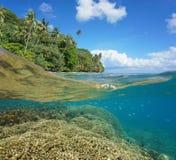Half and half tropical coast coral reef underwater royalty free stock image