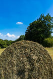 Half Hay Roll Bale Abstract Blue Sky Summer Field Farm Stock Photography