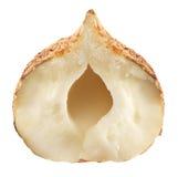 Half of hazelnut isolated on a white background. Stock Photo