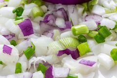 Half a large bulb of sweet onions surrounded by an assortment of chopped onions on a white plate on the kitchen counter waiting fo stock photo