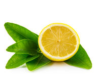 Half lemon  and leaf. Isolated and white background Royalty Free Stock Photos