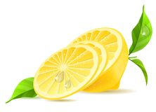 Half of lemon and slices Royalty Free Stock Image